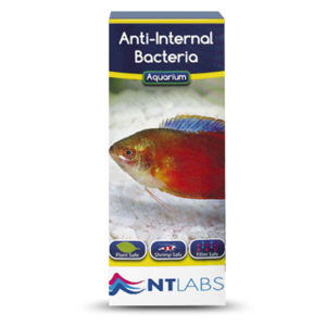 Anti Internal Bacterias