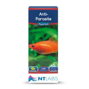 Anti Parasito