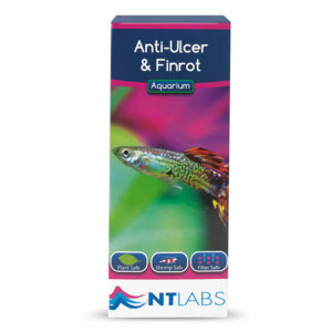 Anti-Ulcer&Finrot