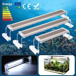 pantalla de led de acuario