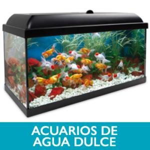 Acuarios de Agua dulce